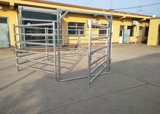 Australia Standard Steel Cattle Fence , Galvanized Horse Fence Panels With 5 / 6 Rail